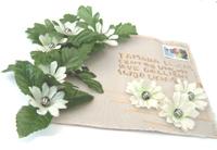 lettre fleurs cadeaux fête des mères