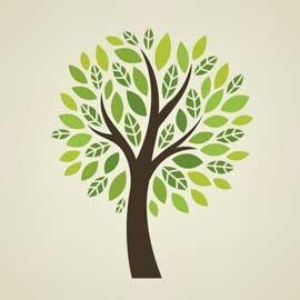 Jouets gratuits écologiques éducatifs
