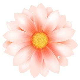 Coloration artificielle de fleurs