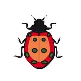 le jeu de piste des insectes