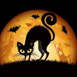 Course au trésor thème Halloween