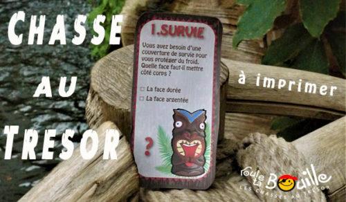 jeu explorateur, survie sur une île
